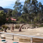 Halls Gap - Commercial Landscaping Project by Ian Evans Creative Landscapes